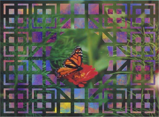 Butterfly on Lattace 001 A