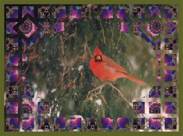 Cardinal on Onion Lattace w Fractal 4